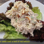 Chicken salad over a bed of red lettuce